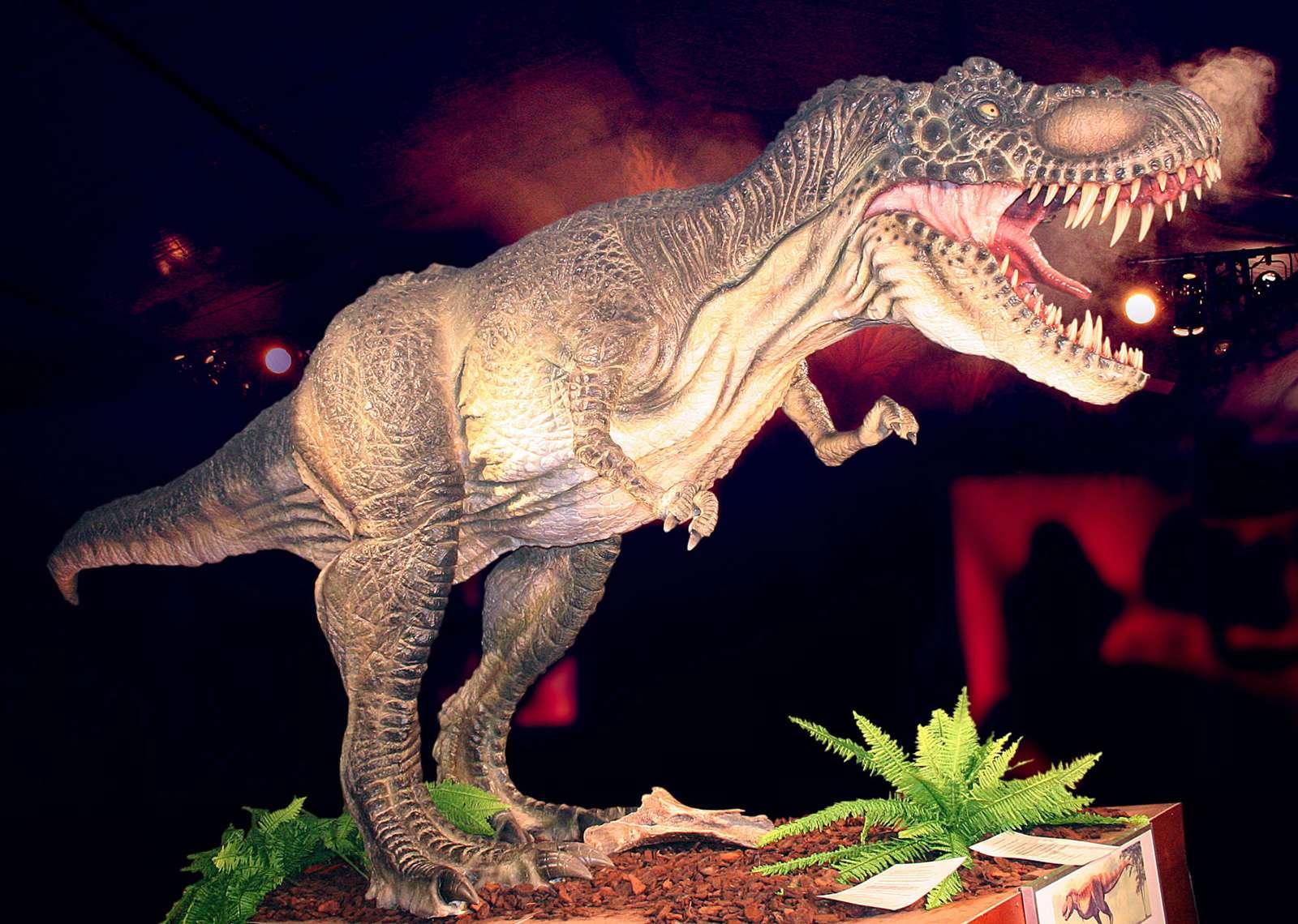 exposición de dinosaurios2-donostia-san sebastian