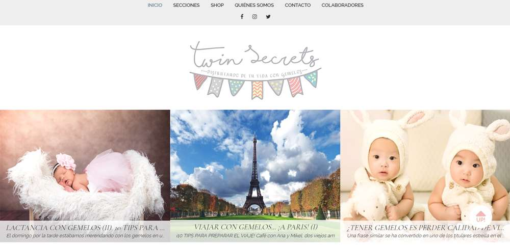 Twin Secrets: disfrutando de una vida con gemelos