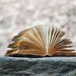 Leyendo en familia: libros para leer y escribir