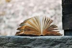 cuentos_leyendo en familia_Virginia Gil Rodríguez_Hondarribia