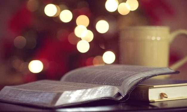 Leyendo en familia: Raquel Díaz Reguera