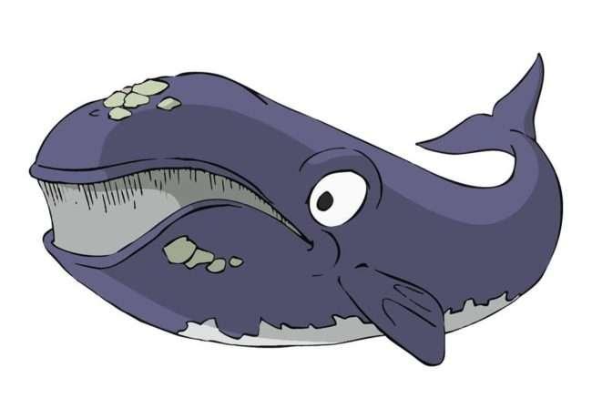 hondarribiko balea-ARMA PLAZA FUNDAZIOA Y SANTA MARIA MADALENA ARTE TAILERRA -Hondarribia