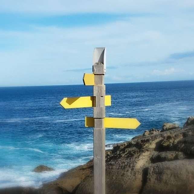 Raíces y alas: ¿dificultades o problemas?