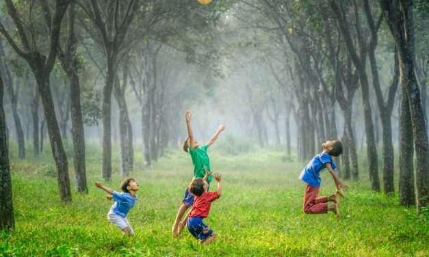 Erlaitza, la nueva Escuela con metodología Montessori, en Urruña